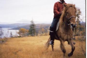 jorm_ola_rider_gauss